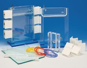 Denaturing gradient gel electrophoresis (DGGE) systems