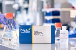 PEIpro®, DNA transfection reagent for virus production