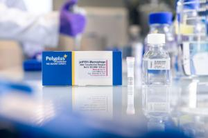 jetPEI®-Macrophage, DNA transfection reagent